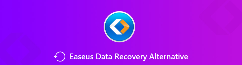 EaseUS Data Recovery Alternative