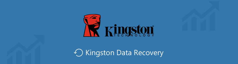 Kingston Datenrettung