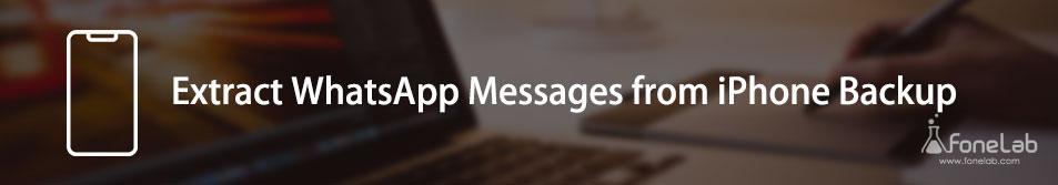 Extrahieren Sie WhatsApp-Nachrichten aus dem iPhone-Backup