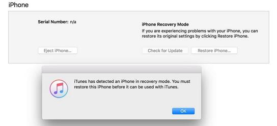 ios device recovery mode on itunes