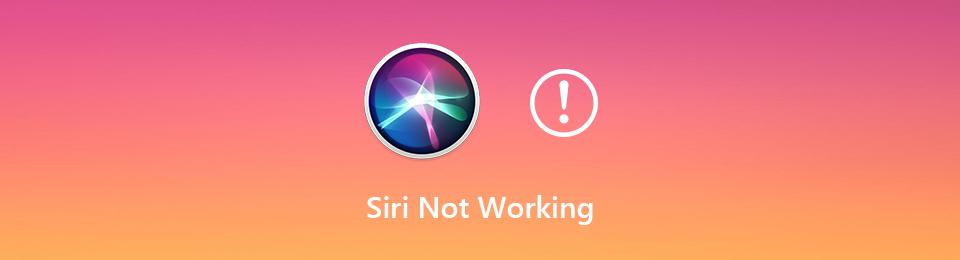Siri funktioniert nicht