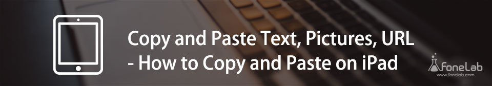 Copy and Paste on iPad