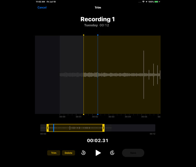 How to Record Audio on iPad by Using Voice Memos edit