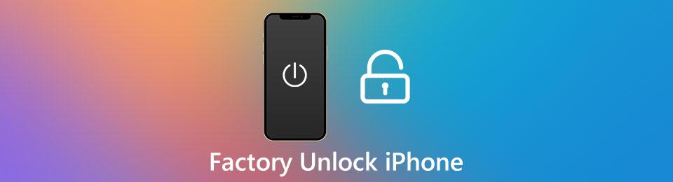 Tutorial per sbloccare l'iPhone in fabbrica senza password (passo dopo passo)