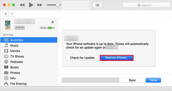 如何使用iTunes禁用iPhone