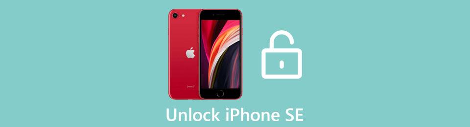 3 Möglichkeiten zum Entsperren des iPhone SE-Passcodes (Unterstützung des neuesten iOS 14)