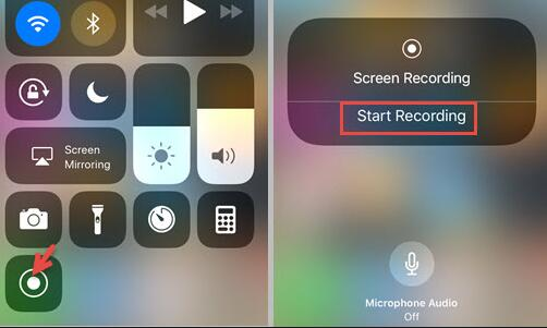 tap screen recording icon on iphone