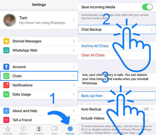 Sichern Sie WhatsApp in iCloud