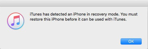 iTunes detected iPhone in Recovery Mode