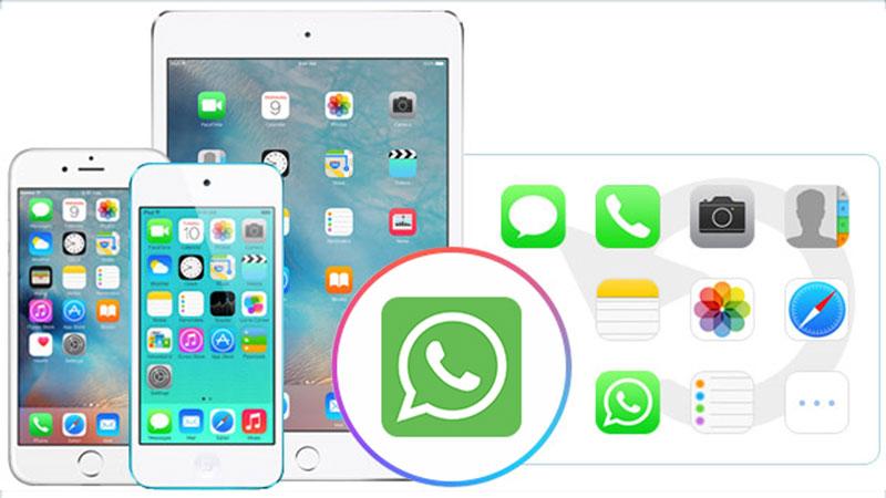 iPhone WhatsApp wiederherstellen