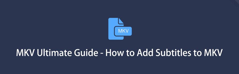 6 MKV Ultimate Guide - Hinzufügen von Untertiteln zu MKV