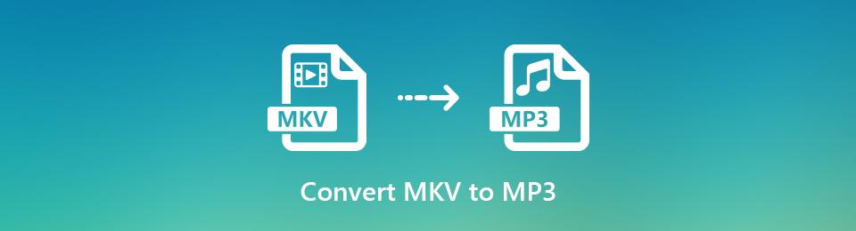 在Windows / Mac /在線上完成將MKV轉換為MP3音頻的完整教程